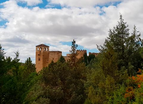 Terrenos del Castillo